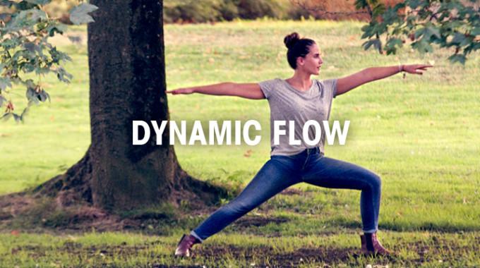 Yoga Under Construction 1280x4004 Dynamic Flow